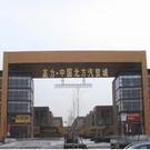 高力?中国北方汽贸城